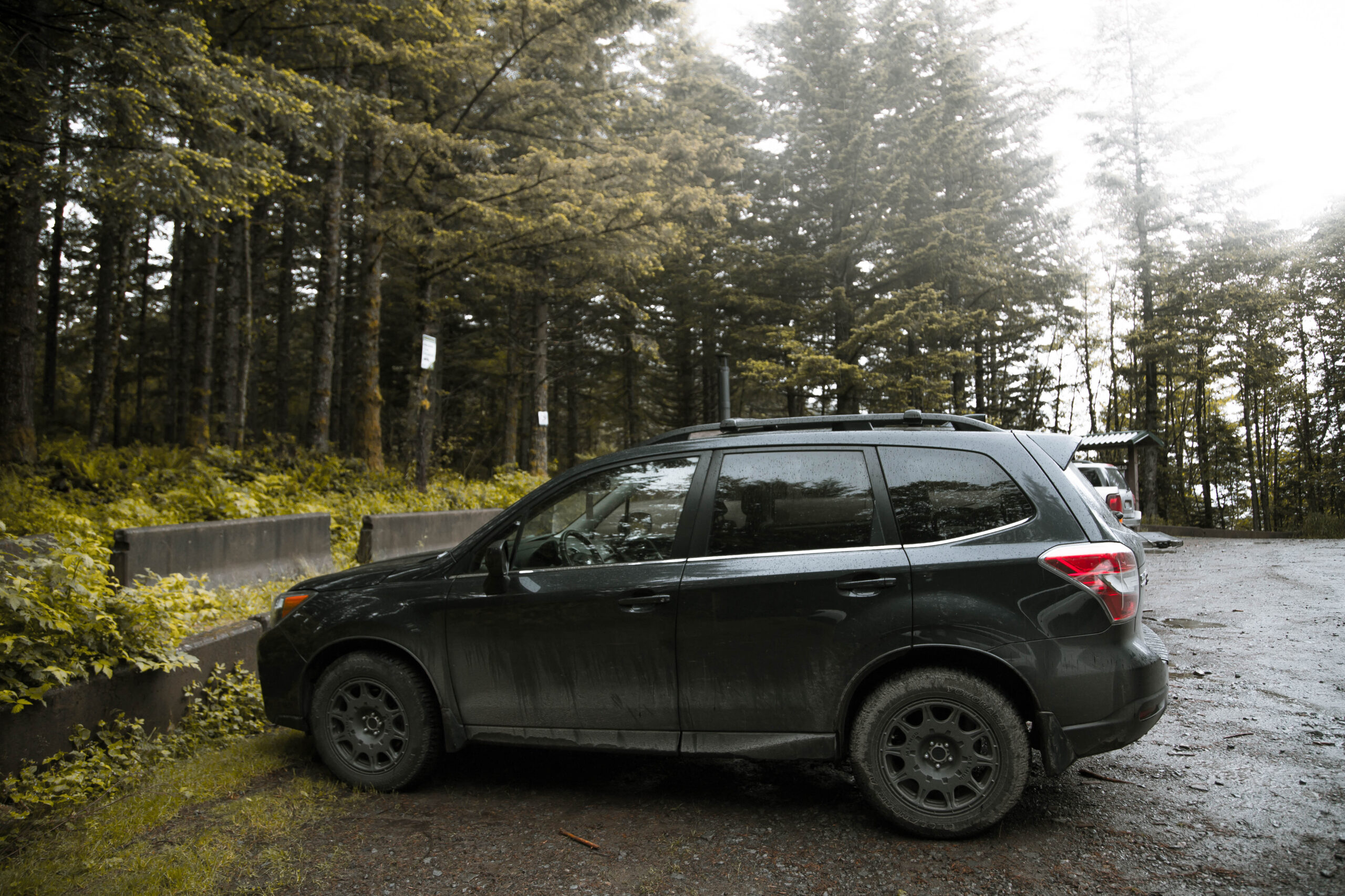 Subaru Forester Lift Kits | Our Favorites